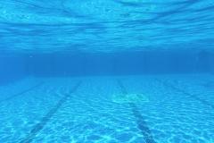 piscina24